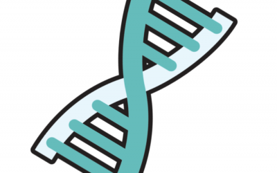 The DNA of Real Estate