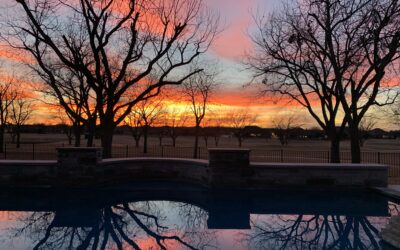 Granbury, TX ~ Pecan Plantation